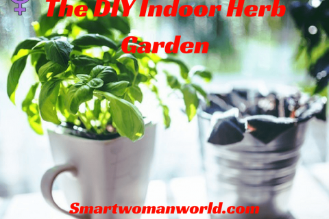 The DIY Indoor Herb Garden
