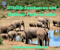 Wildlife Sanctuaries and National Parks in India