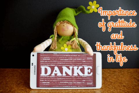 Importance of gratitude and thankfulness in life