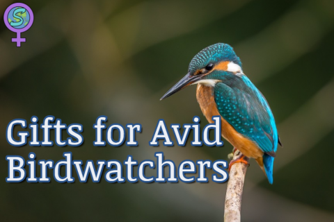 Gifts for Avid Birdwatchers: A comprehensive guide