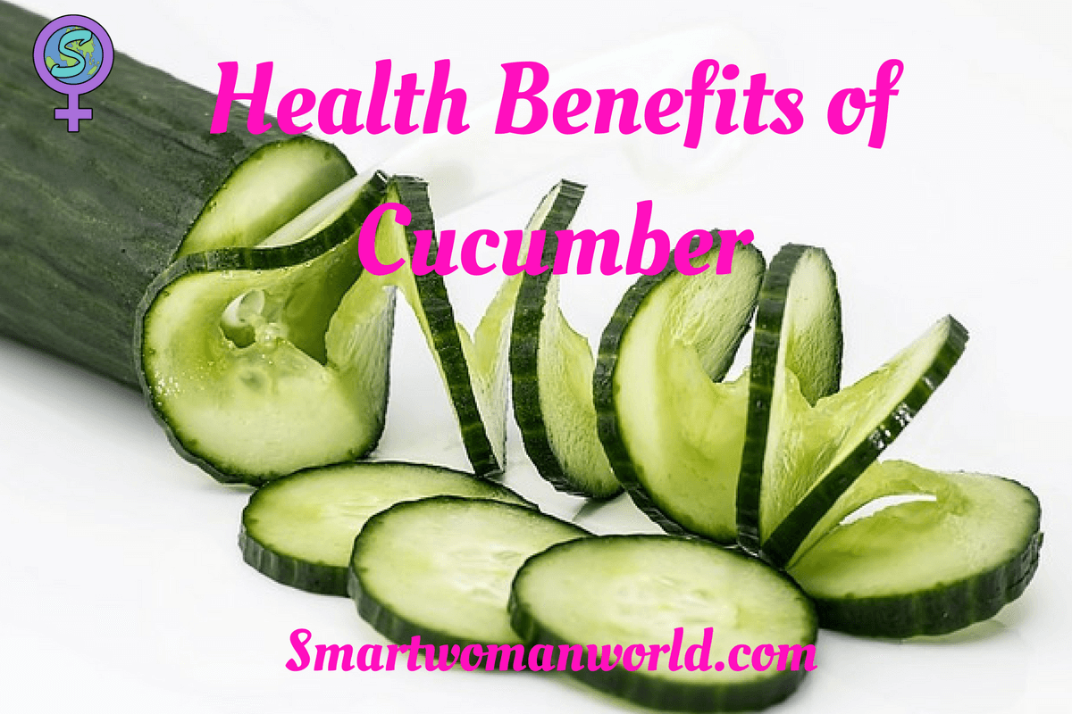 Advantages of cucumber. Cultivation and care